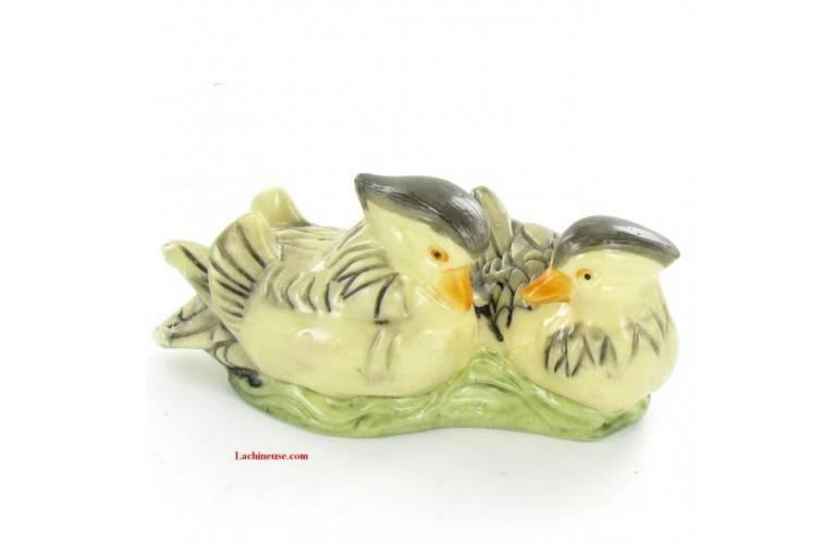 COUPLE CANARDS MANDARINS CHINOIS