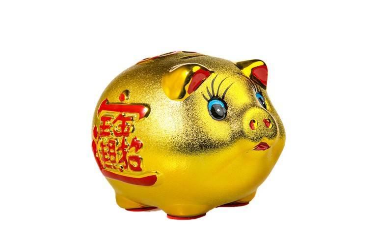 COCHON CHINOIS - Attirer la Fortune