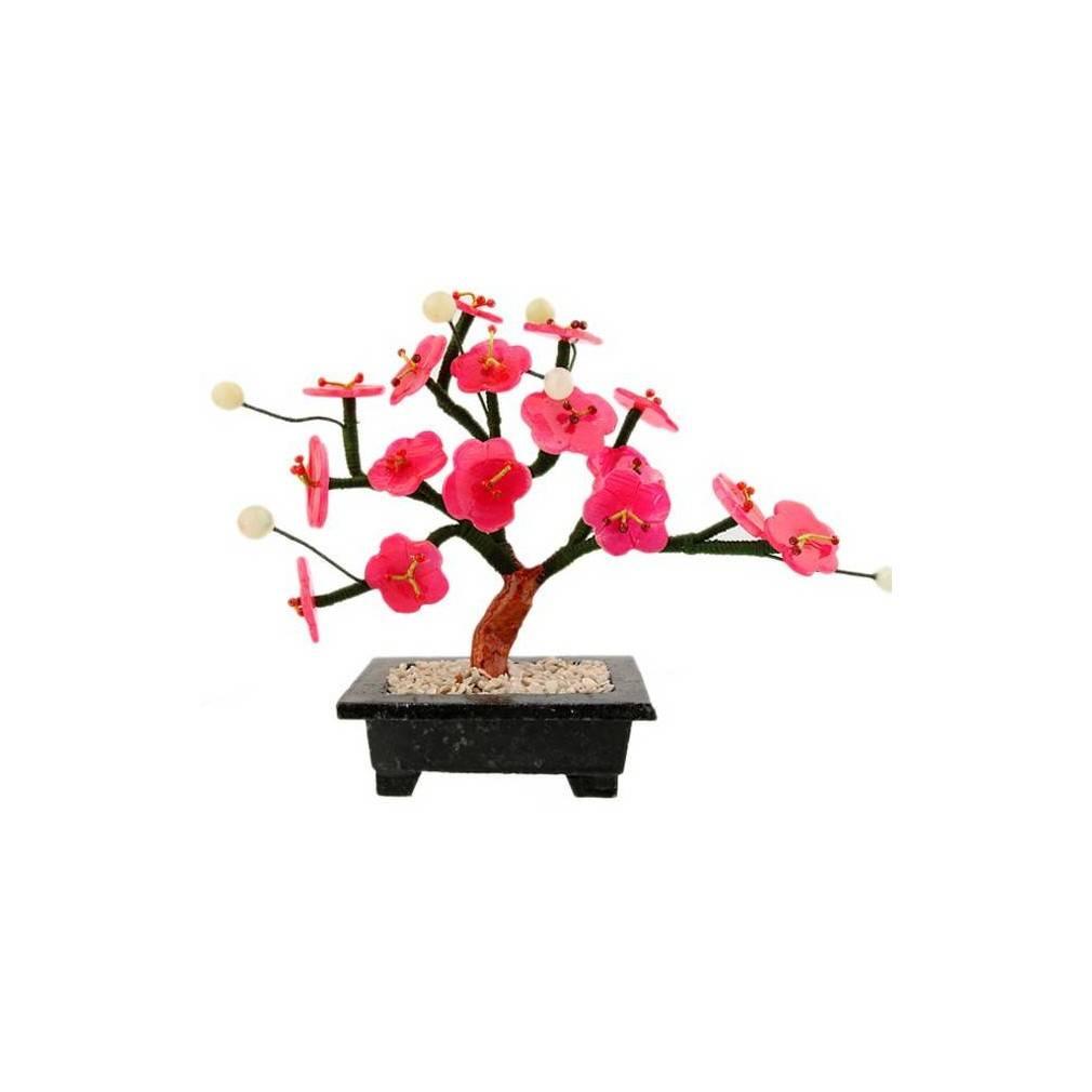 arbre japonais fleurs de cerisier