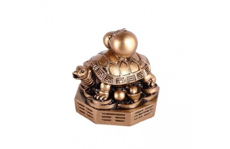 tortue feng shui sur bagua symbole de protection et long vit. Black Bedroom Furniture Sets. Home Design Ideas