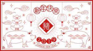 2019, Année du Cochon de Terre !
